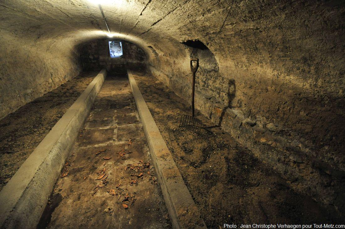 cave endive ou champignons