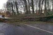 Lorraine : alerte jaune aux vents violents