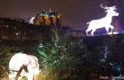 Sentier des lanternes 2017 à Metz : la galerie photo