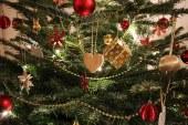 Metz Métropole recycle les sapins de Noël