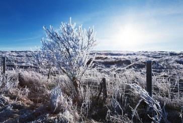 Vague de froid : des températures allant jusqu'à -15°C en Lorraine