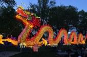Nouvel an chinois à Metz : un atelier pour enfants au Musée de la Cour d'Or