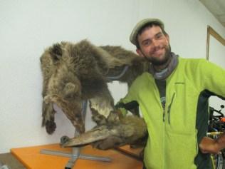 Un ours et un loup tués dans la forêt voisine au kosovo...