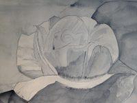 Peindre une fleur à l'aquarelle
