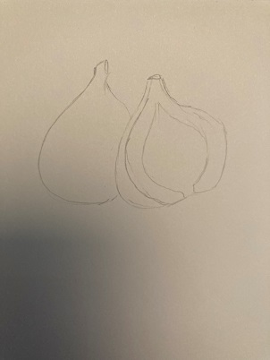 Apprendre à dessiner une figue réaliste en 5 minutes.