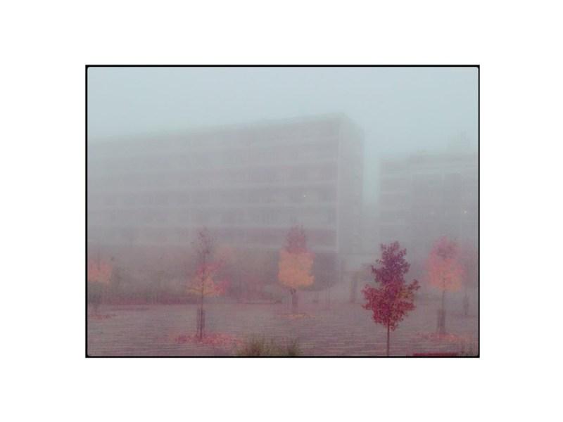 photographie immeuble brouillard by Anna Yurienen Gallego Artiste Photographe