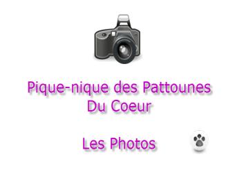 Les photos du pique-nique des «Pattounes Du Coeur»
