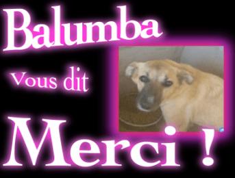 Opération pour Balumba ! MERCI !