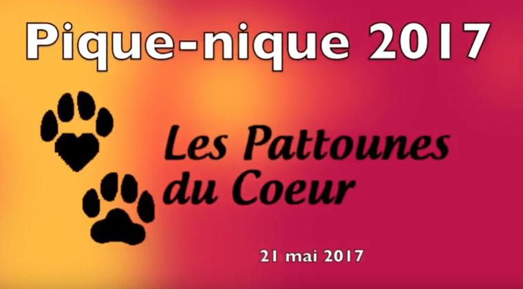 Les photos et vidéo du Pique-Nique 2017