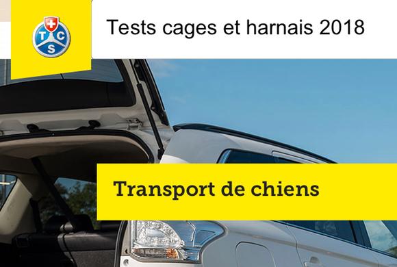 Transport de chiens – Tests du TCS 2018