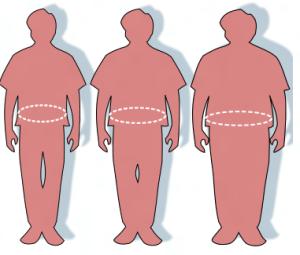 L'inflammation cellulaire et la prise de poids - Études d'Harvard