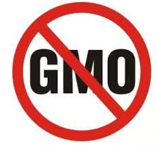 non-GMO symbol