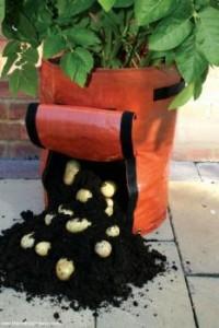 aardappelzak