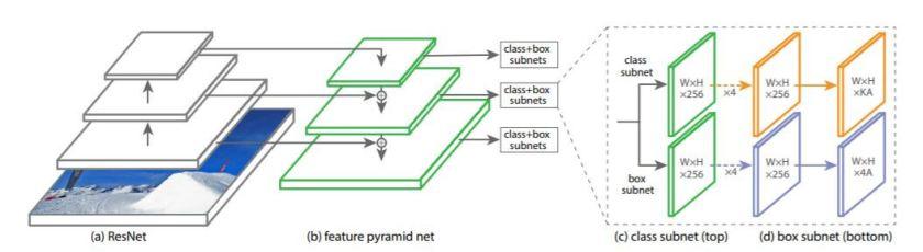 RetinaNet Model Architecture