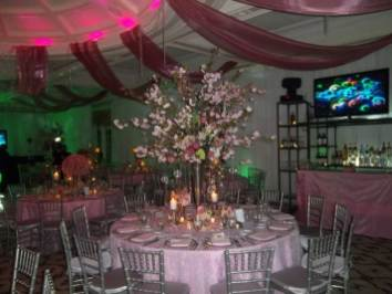 Event-Planning-mitzvah-party