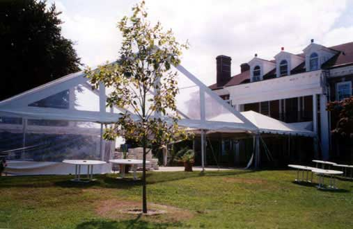Clear-outdoor-tent-for-events