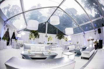 Platinum and white lounge decor