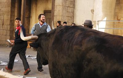 Running AGAINST the bulls.