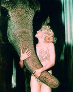 Madonna-md02
