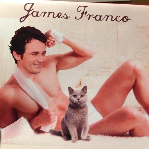 2_cat_franco
