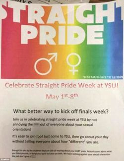 Straight pride poster