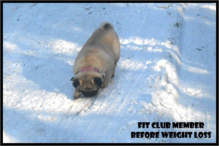 Fit Club Member Before Weight Loss