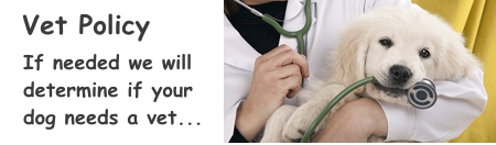 We will use our Vet if needed for your pet.