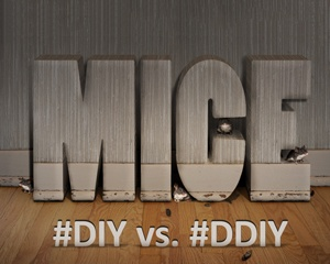 #diy vs #ddiy
