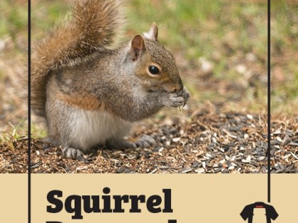 A Hunter Went Insane Before Dying From An Exceptionally Rare Brain Disease As A Result Of Eating Squirrel Brains