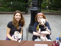 Bideawee volunteers Theresa Rotunno (with chihuahua Dottie) and Lauren Pytel ( with mini-poodle Curly)