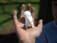 Close-up of 3D printed squirrel