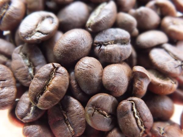 Town Coffee Corner - Organic Teas and Coffees - Costa Rican Medium Roast