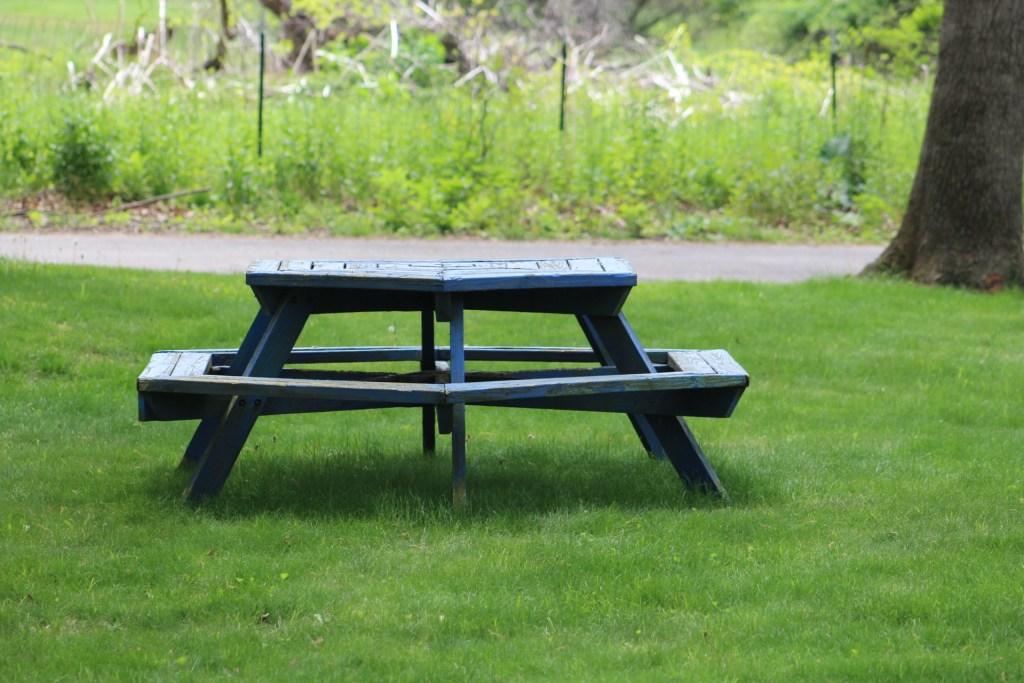 leeds park picnic table