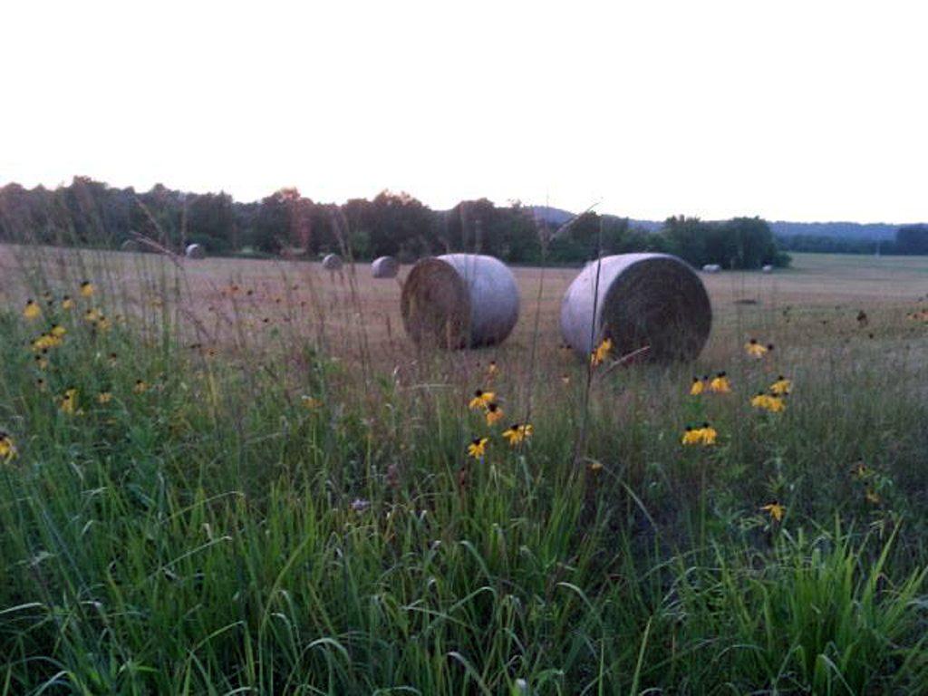 Farm and Prairie