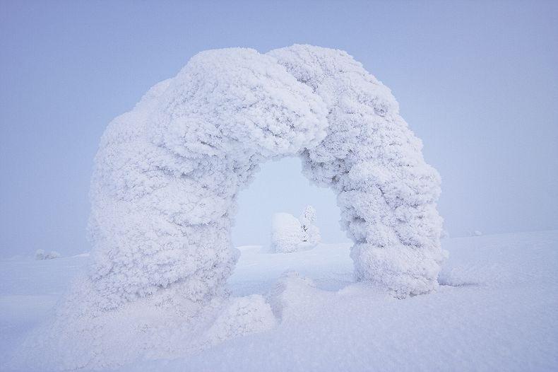 Centinelas-del-Ártico-4