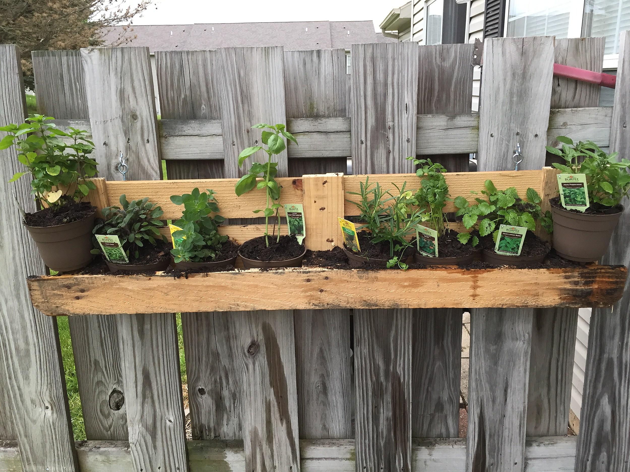 own hanging herb garden