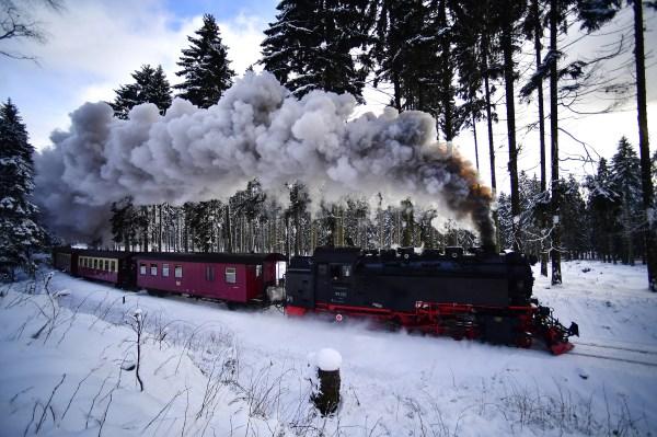 polar express wiki # 23