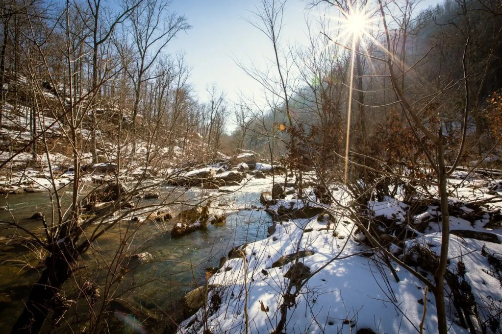 Richland-Creek-Backpacking-12
