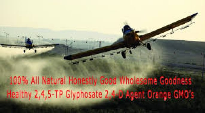 Agent Orange & GMO Poisonous Chemicals @ ToxicNow.com.jpg