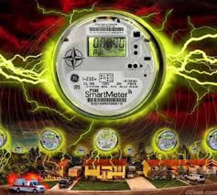 SmartMeters Kill @ Toxicnow.com.jpg