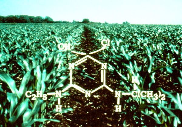 Agricultural Chemicals In The Upper Midwest Midcontinent