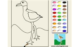 Птица: Раскраски для малышей
