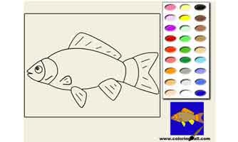 Рыбка: Раскраски для малышей