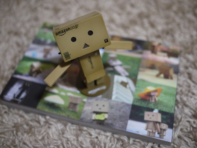 365 Days of Danboard