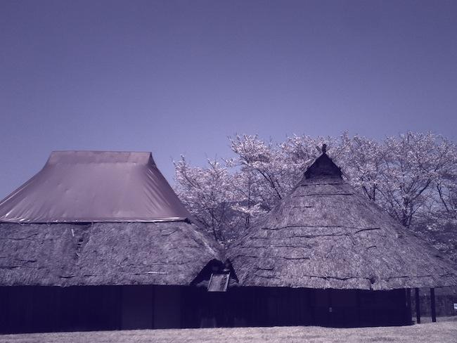 COLOR_BLUE