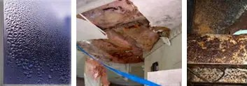 water damage - Solution Information - Heat Recovery Ventilation PAS