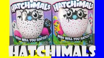 Toy Fan TV Hatchimals Bearakeet