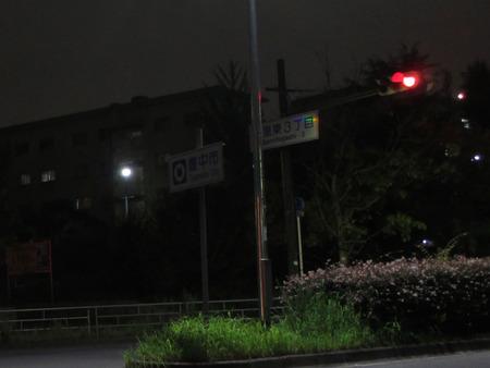 IMG_6090-1