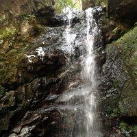 瀧神社のご神体である滝
