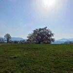安曇野の高原